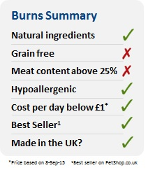 Burns Summary Image
